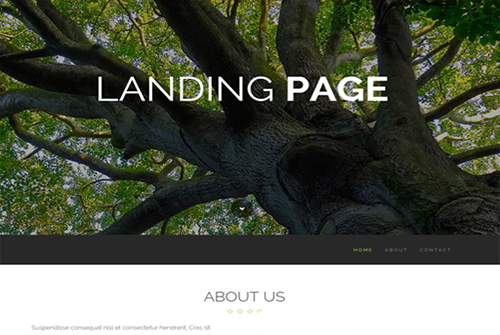 landing pages from portland digital agency